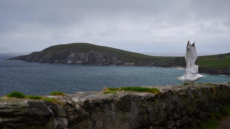 Irland Sicht auf den Brandon Point